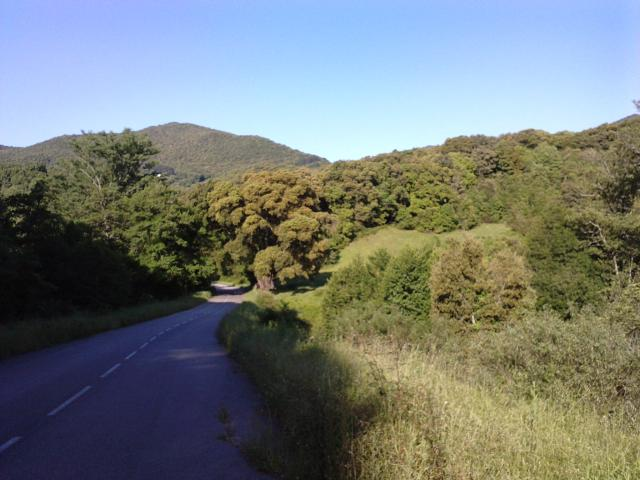 en pleine nature entre Ajaccio et Sartène
