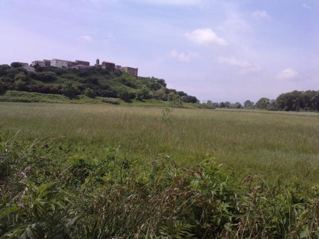 village de la plaine orientale
